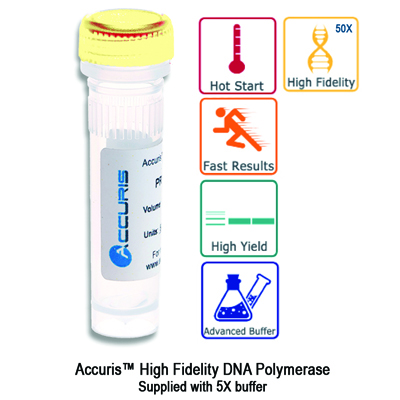 Accuris™ High Fidelity Polymerase